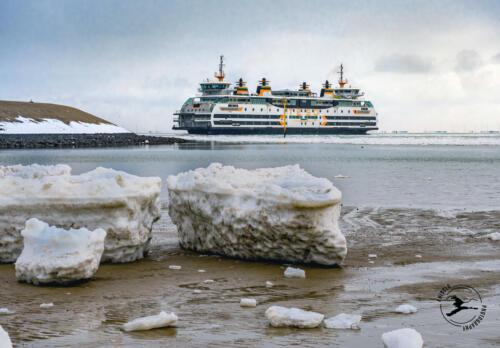 T9. Dokter Wagemaker; veerpont naar Texel in ijzig weer