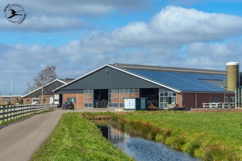 B3 Industriele boerderij met zonnepanelen