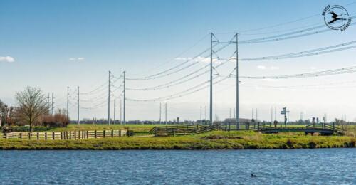 E5 Nieuw type hoogspanningsmast in de polder