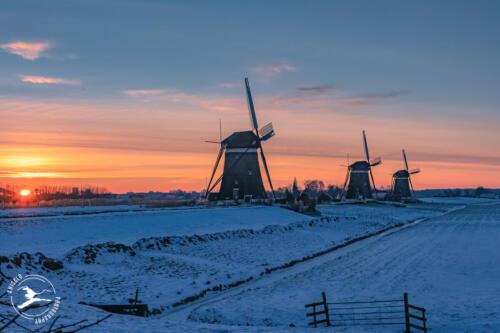 N9. de drie molens van Stompwijk
