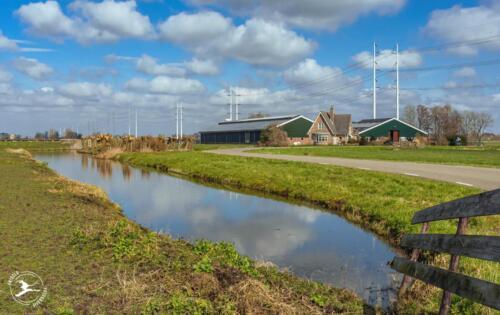 B4 boerderij met zonnepanelen en nieuwe hoogspanningsmasten